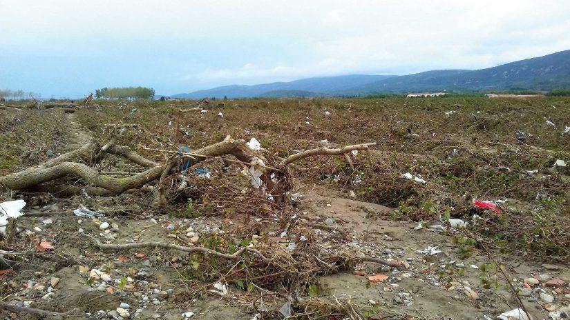 Troncs d'arbre, végétaux, sables, cailloux et déchets en tout genre ont envahis les vignes, charriés par l'eau.