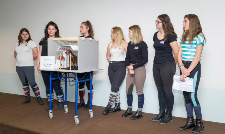Les élèves du lycée privé Sainte-Maure présentent leur projet à l'aide d'une maquette représentant une salle de pansage.