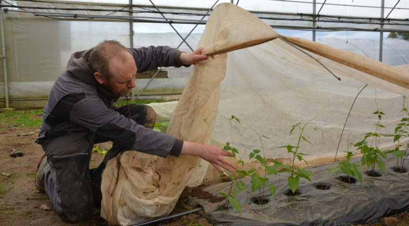 Les 2 800 m2 de serres fournissent des légumes bio commercialisés dans le circuit court.