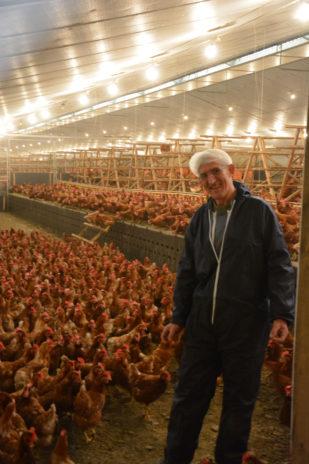 Emploi. Esat agricole. Enracinée dans la terre bretonne depuis 35 ans, la ferme des Hardys-Béhélec fait pousser des légumes bio et de la fierté dans l'esprit de personnes en situation de handicap psychique. Visite.