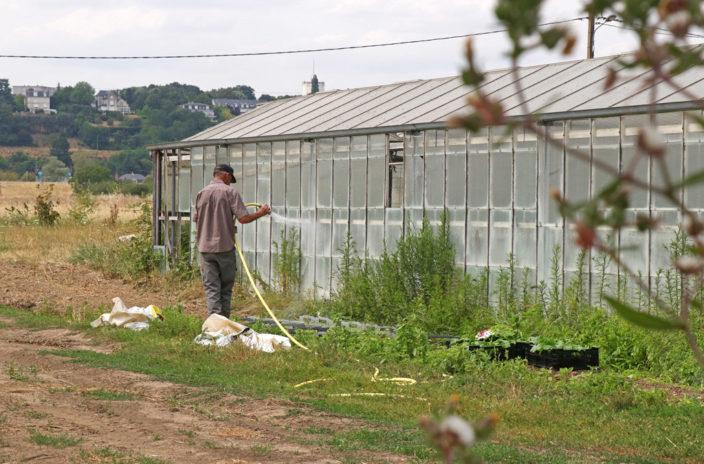 Le chef des cultures, Antoine, travaille au jardin depuis 10 ans. Maraîcher depuis plus de 30 ans, il transmet son savoir aux salariés en insertion tout en continuant de développer ses propres connaissance à travers les évolutions du métier et du bio.