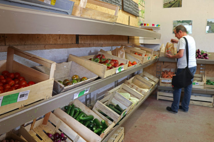 À l'entrée du jardin, le pôle de vente en directe emploie quatre personnes en insertion en quasi autonomie. Avec le marché bio, le jardin compte 220 clients par semaine en moyenne.