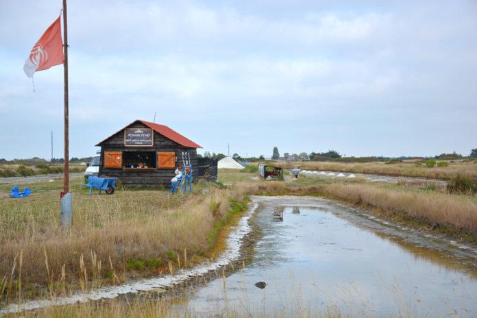 Le marais salant du domaine de No, proche du village vacances.