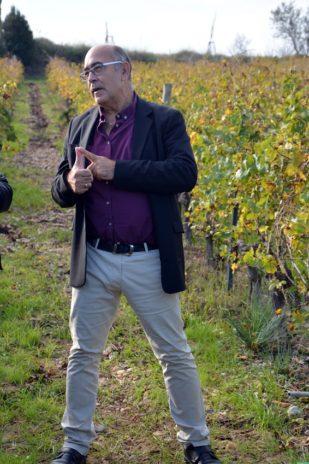 Pyrénées-Orientales Les vignerons parlent aux vignerons Le 22 novembre, au cœur des Pyrénées-Orientales, sur un territoire qui vit par et pour la vigne, le service santé-sécurité au travail de la MSA Grand Sud a donné la parole aux viticulteurs, les premiers concernés par les troubles musculo-squelettiques.  #Grand-Sud #Viticulteurs