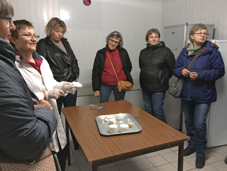 Dégustation de fromages après visite de la chèvrerie